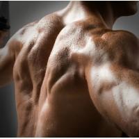 Тестостерон — главный мужской анаболический гормон